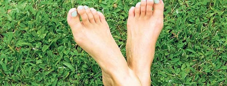 Fun Facts About Feet